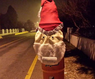 Santa Claus speed camera, Italy