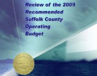Suffolk County budget report