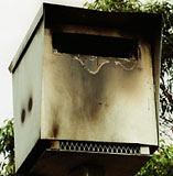Burnt speed camera, Bateau Bay