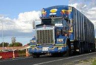 New Zealand truck