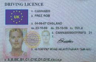 Sample UK license